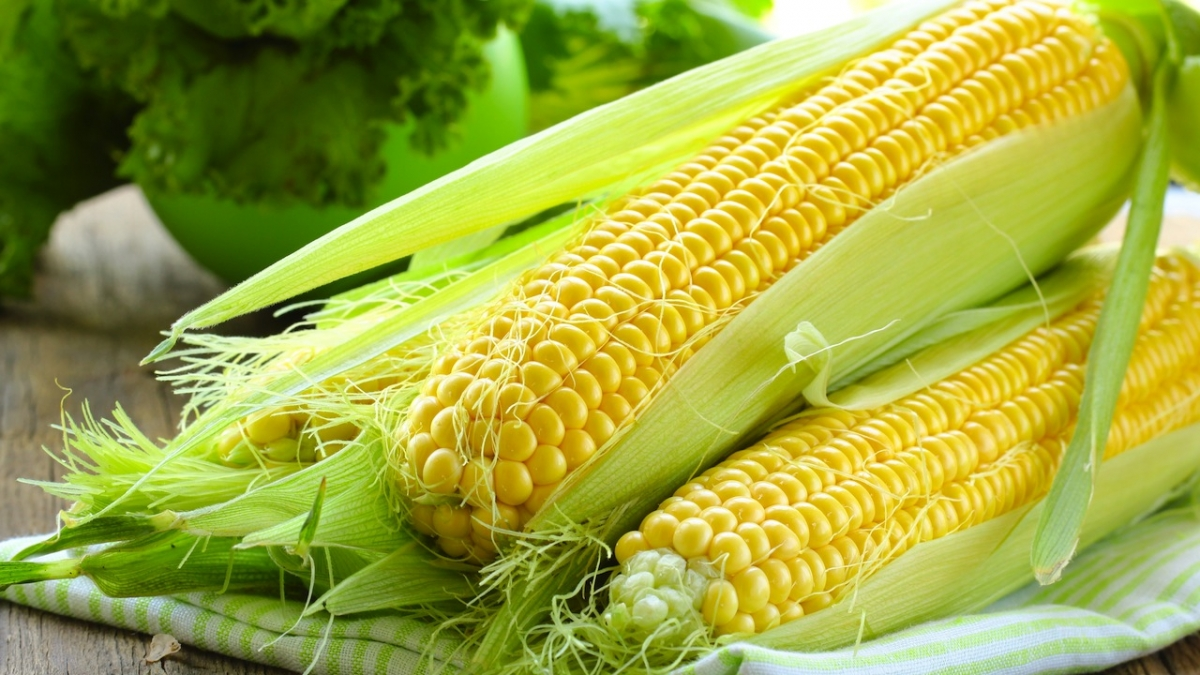 Patlamış mısır, antioksidan zengini çıktı